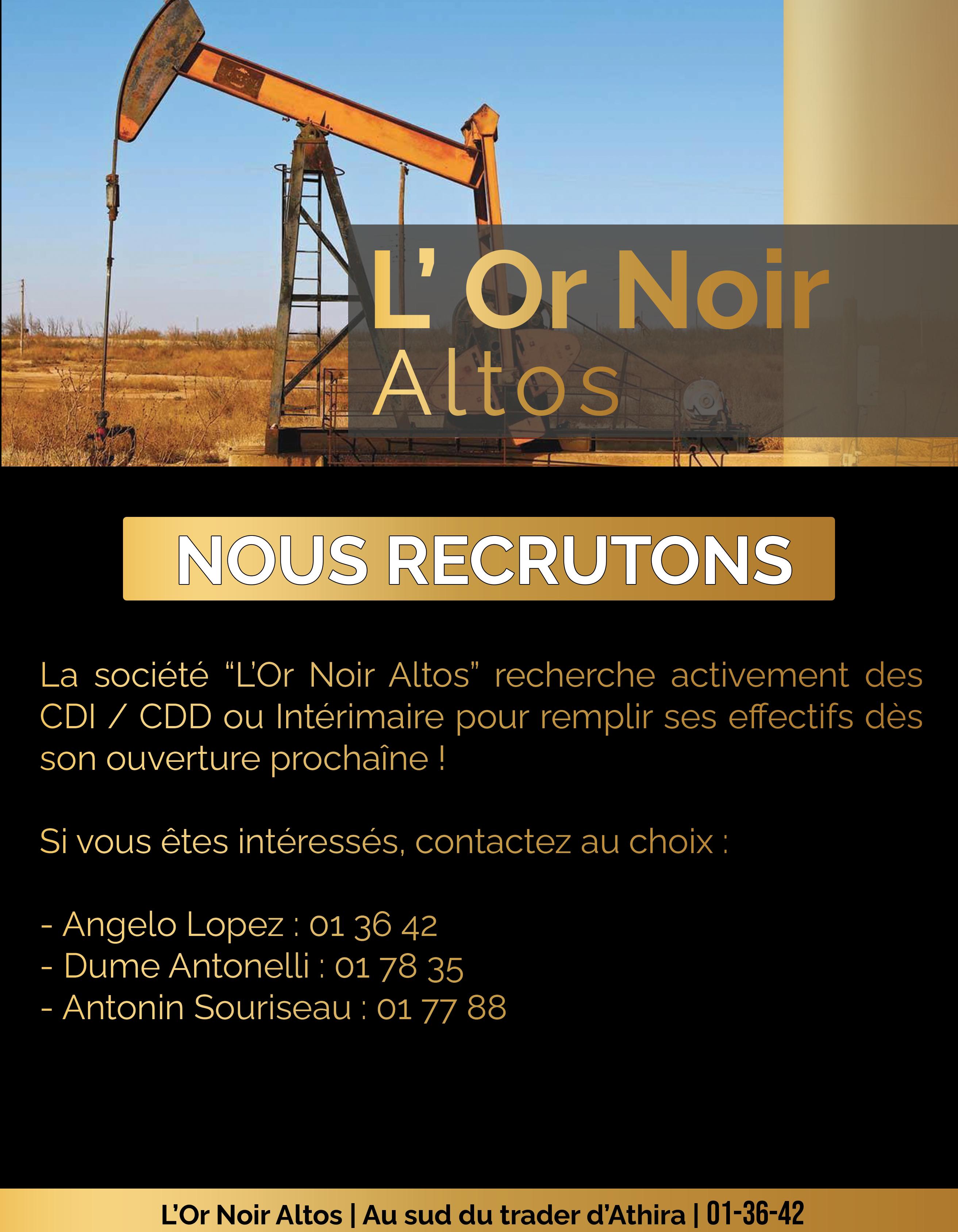 Or Noir Altos Recrutement.png
